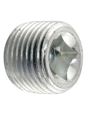 A-4030  Differential Drain/Fill Plug