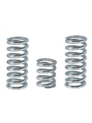 A-6032  Springs ONLY for front engine mount